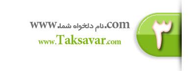 نوع سوم و بسیار عالی و تخصصی طراحی سایت و حضور در اینترنت